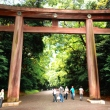 Torii at the Meiji Jingu entrance (Harajukumon)