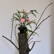 bucharest-botanical-garden-ikebana-04.jpg