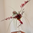 bucharest-botanical-garden-ikebana-08.jpg