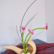 bucharest-botanical-garden-ikebana-10.jpg