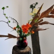 Ikebana expo at Bucharest Botanical Garden
