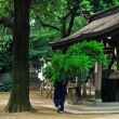 hato-mori-hachiman-shrine-01.jpg